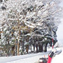 11月20日秋田県美郷町「兎農園」雪景色写真集