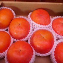 和歌山から柿が届きました。ご馳走様でした。