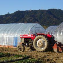 心の風景「安濃津農園MF185と長谷山」