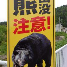 美郷町山麓地帯は熊の季節になりました