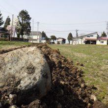 農業実践!!石と上手に付き合う方法、私の提案